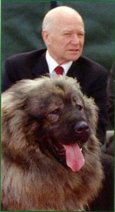 Кавказская овчарка Басмач, владелец Абашидзе А.И.