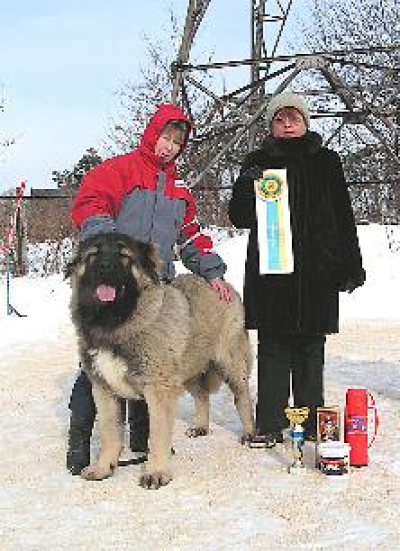 Кавказская овчарка Русский Риск Атас 2
