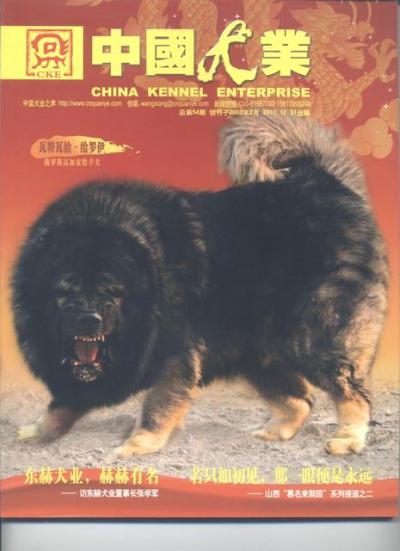 Кавказская овчарка Отважный Герой